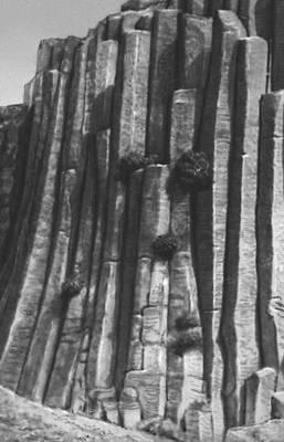 Выветривание. Базальтовые столбы (Армения)