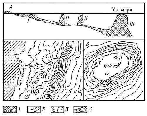 Коралловые сооружения (схема)