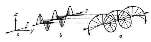 Колебания проекций электрического вектора световой волны