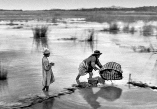 Рыбная ловля (район Высокого плато)