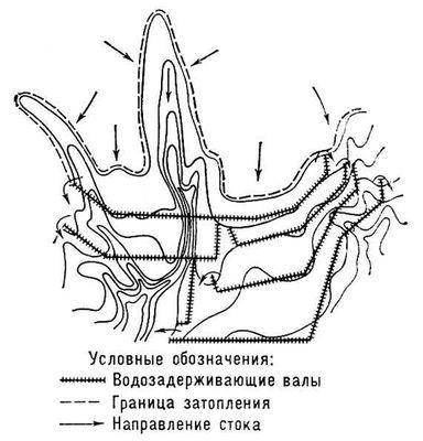 Ярусный  мелководный лиман на склоне (схема)